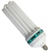 Interfit Lamp 150W 230V/50Hz