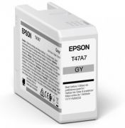 Epson SP-P900 T47A7 Gray