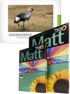 Permajet MattPlus 240 - A2, 25 lehteä
